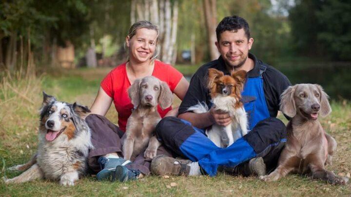 Pamlskovy raj - rucni vyroba hracek, obojku a voditek pro psy