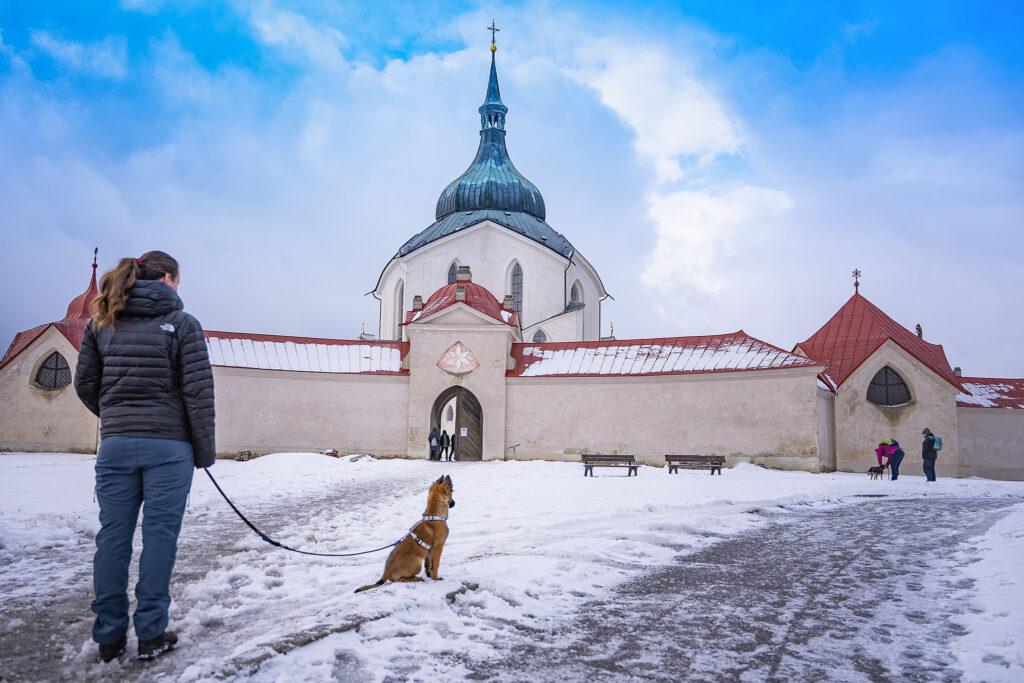 Socializace psa – pes by měl zůstat v klidu a netahat, vysvětluje odbornice a psí trenérka Jitka Hrdinová.